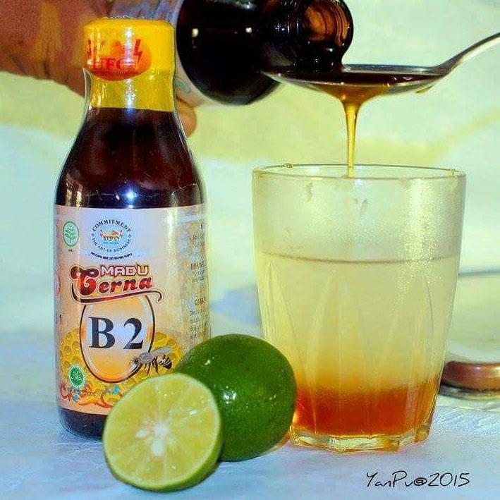 Madu Cerna B2 Obat Maag